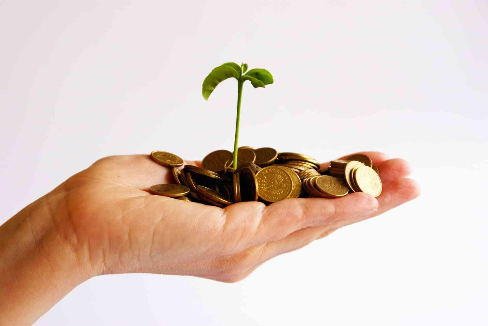 Tout savoir sur l'ISR : l'investissement éthique et écologique